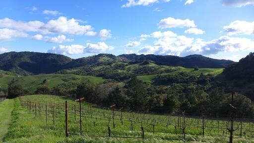 Cain Vineyard & Winery Image