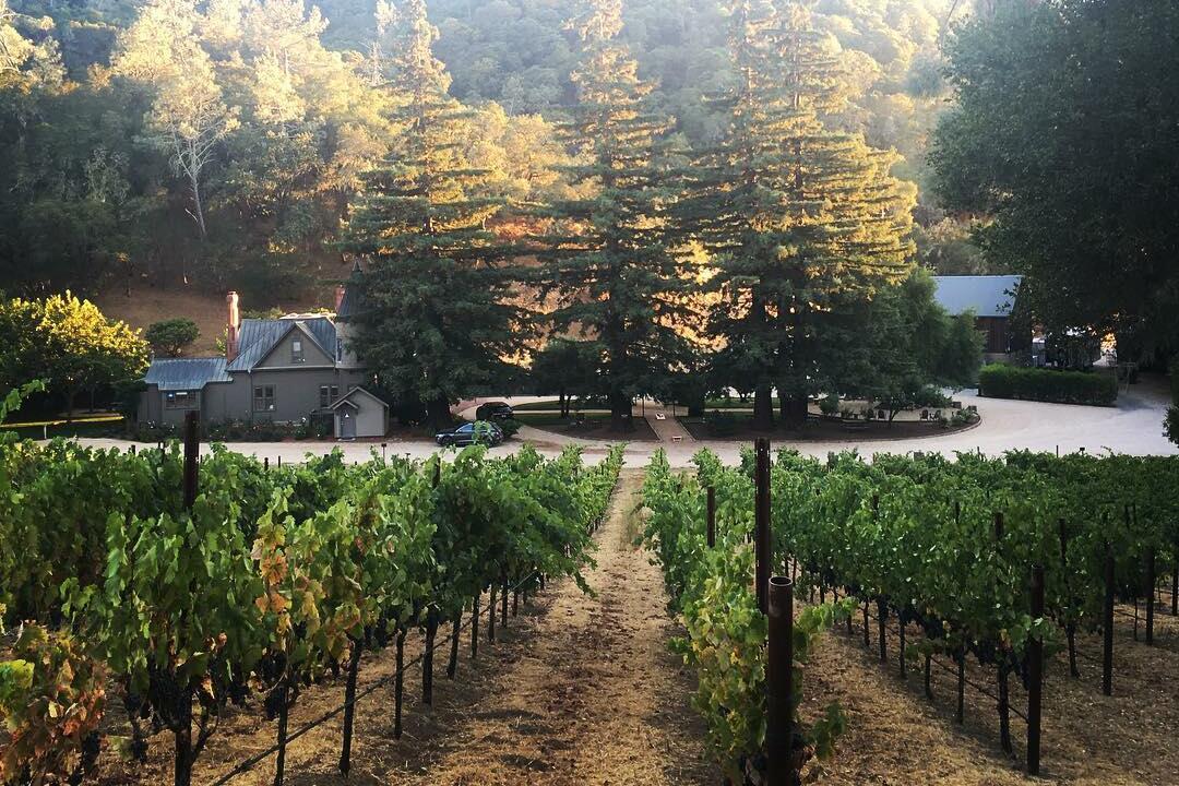 Brown Estate Vineyards Cover Image