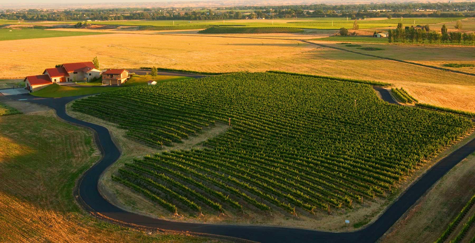 Pepper Bridge Winery Cover Image