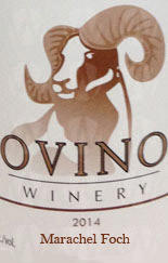 Ovino Winery Marechal Foch