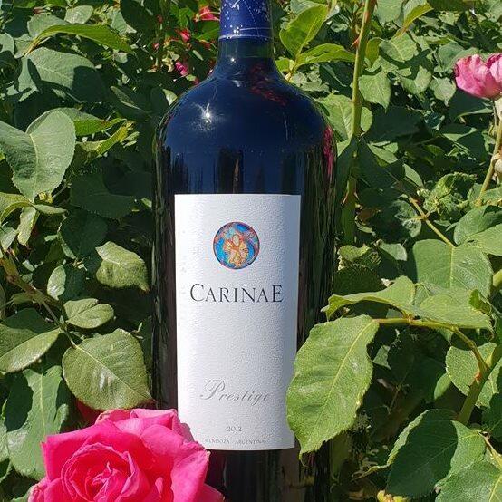 CarinaE Cover Image
