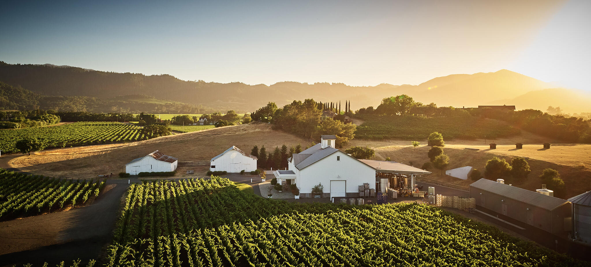 Gamble Family Vineyards Cover Image