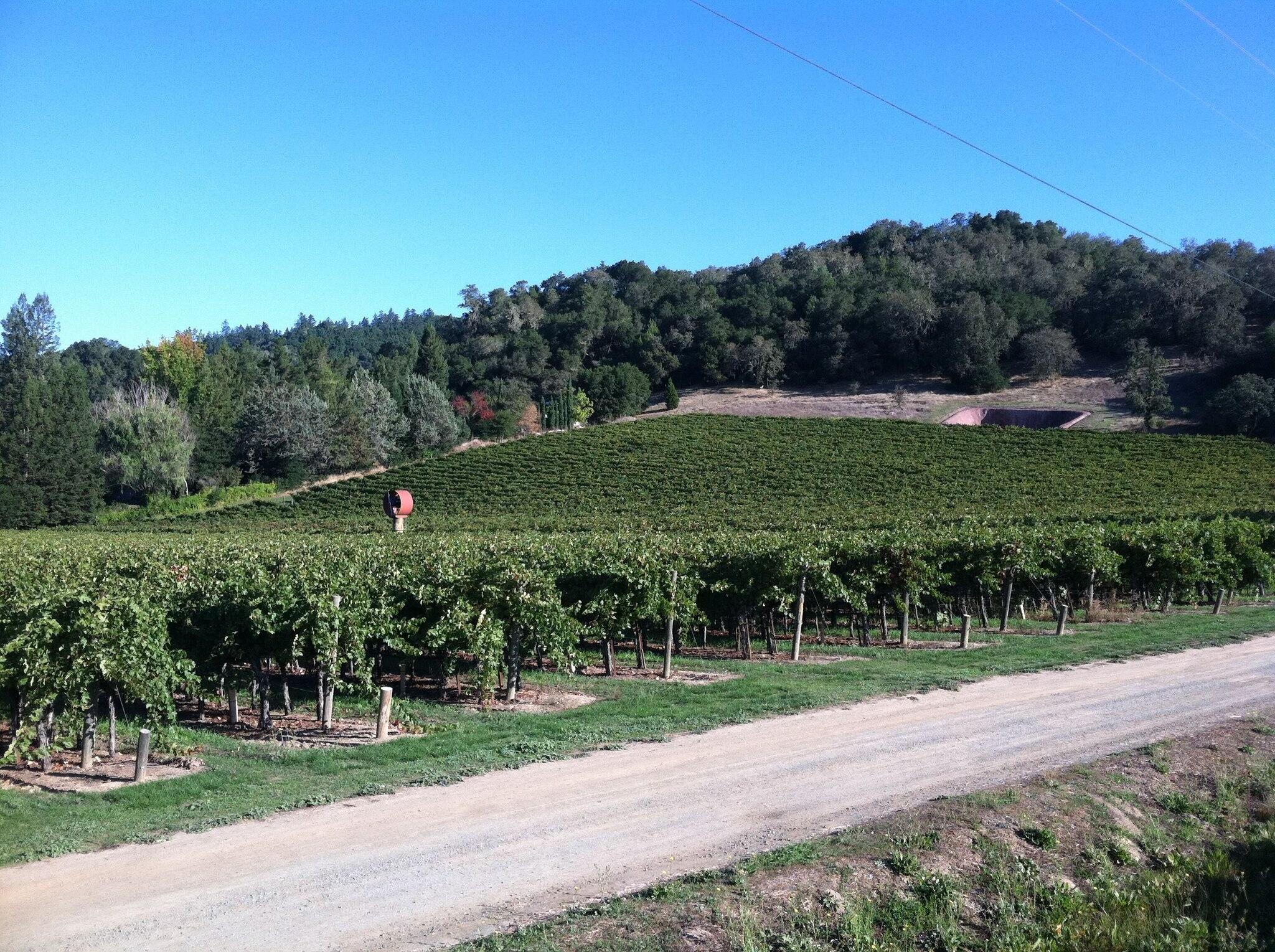 Anderson's Conn Valley Vineyards Cover Image