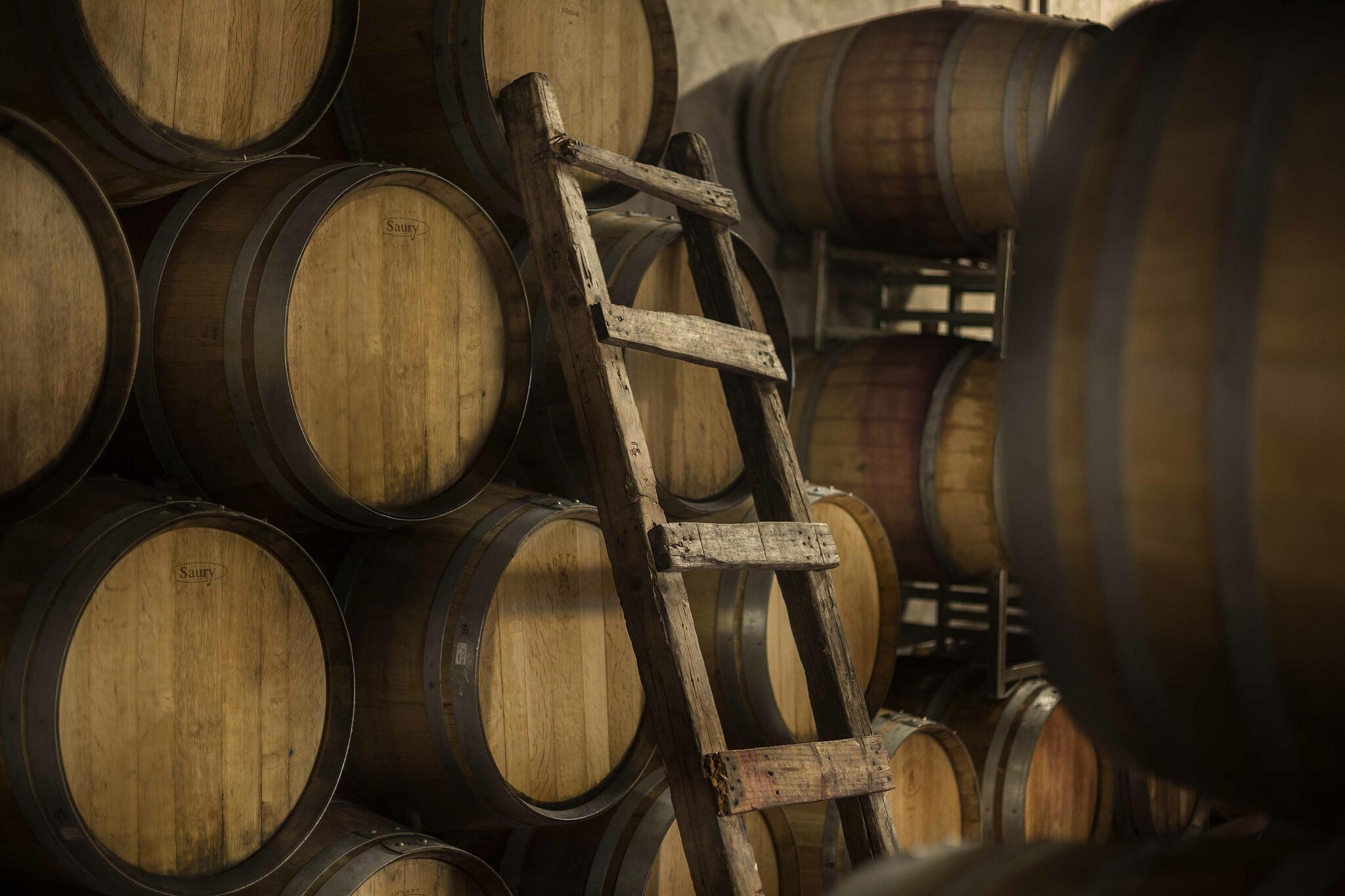 Zorzal Wines Cover Image