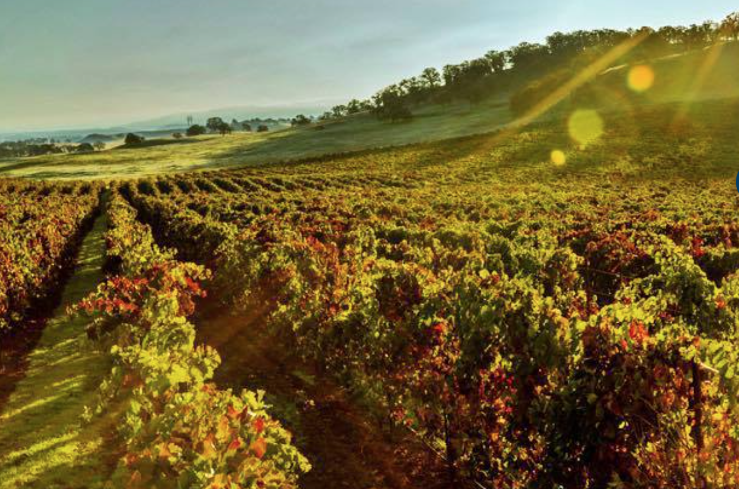 Havens Winery Cover Image