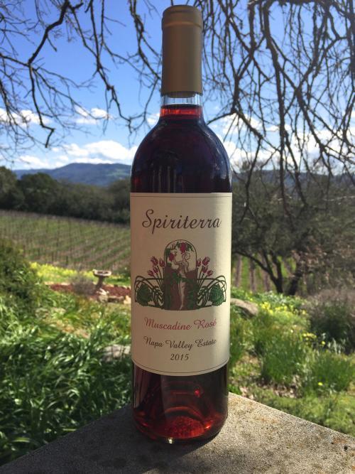 Spiriterra Vineyards Muscadine Rosé Bottle Preview