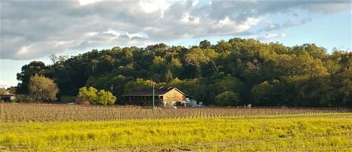 William Harrison Vineyards & Winery Image