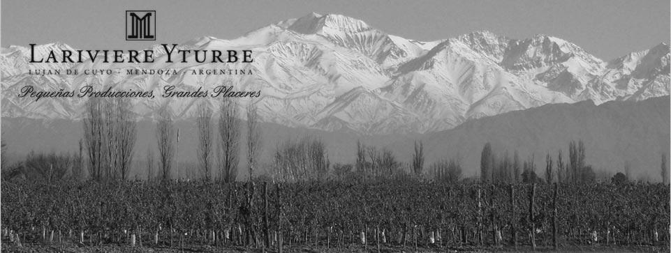 Lariviere Yturbe Cover Image
