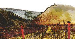 Lagniappe Peak Vineyards Logo