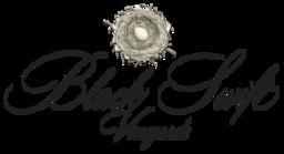 Desert Valley Vineyard Logo