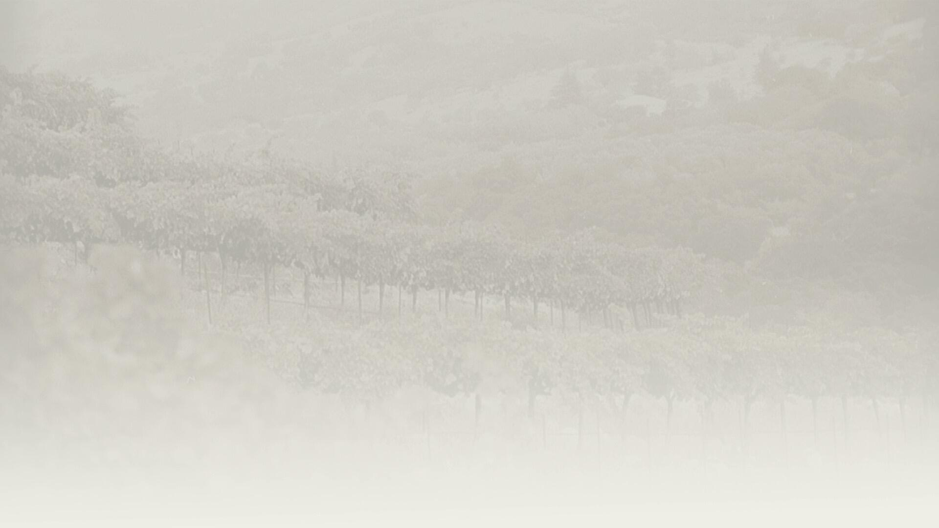 Page Wine Cellars Cover Image