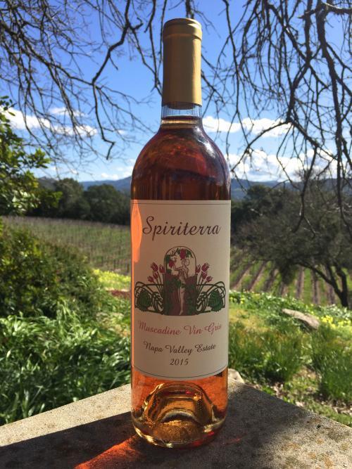 Spiriterra Vineyards Muscadine Vin Gris Bottle Preview