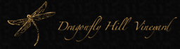 Dragonfly Hill Vineyard Logo