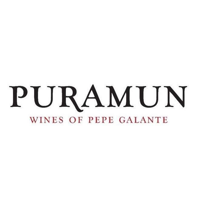 Puramun Logo