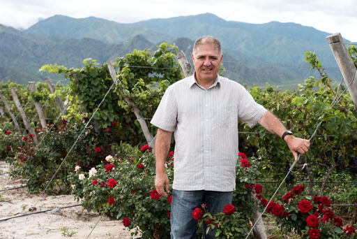 José Luis Mounier Avatar