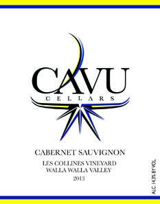 CAVU Cellars Cabernet Sauvignon Bottle Preview